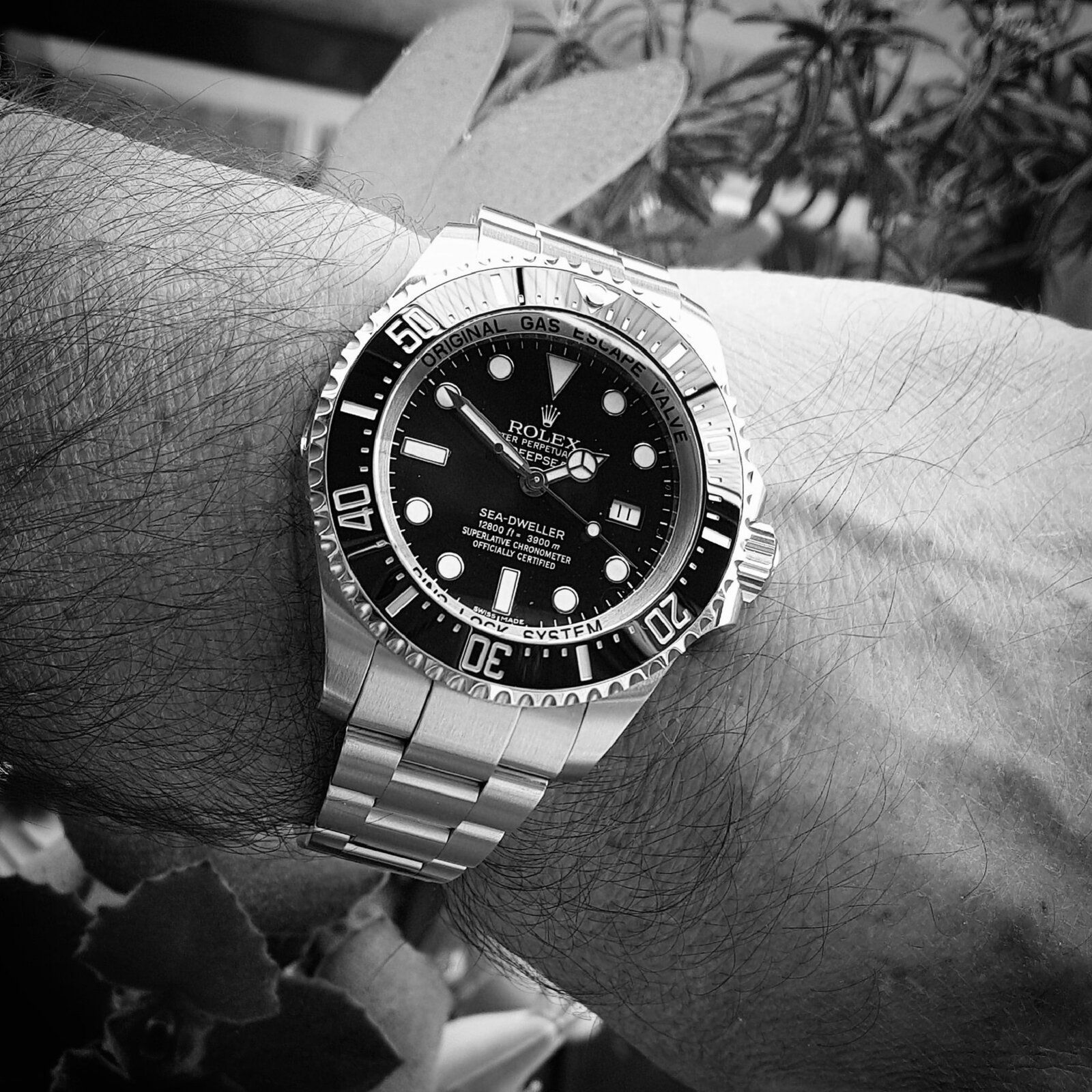 Rolex Sea-Dweller Deepsea 44mm 3900M Cal. 3135 Ref. 116660 (B&W)(1).jpg