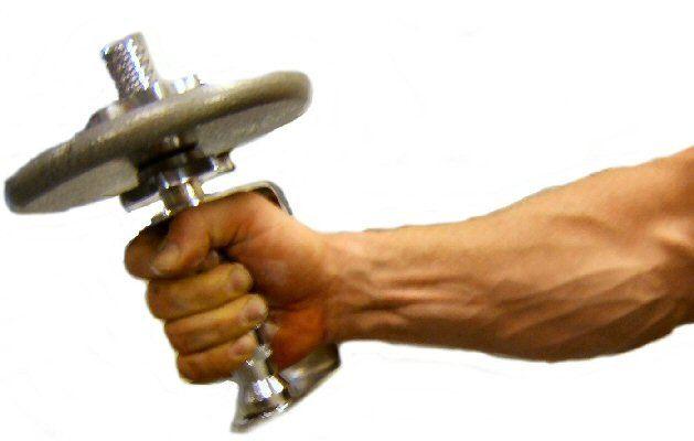 wrist_forearm_big.jpg